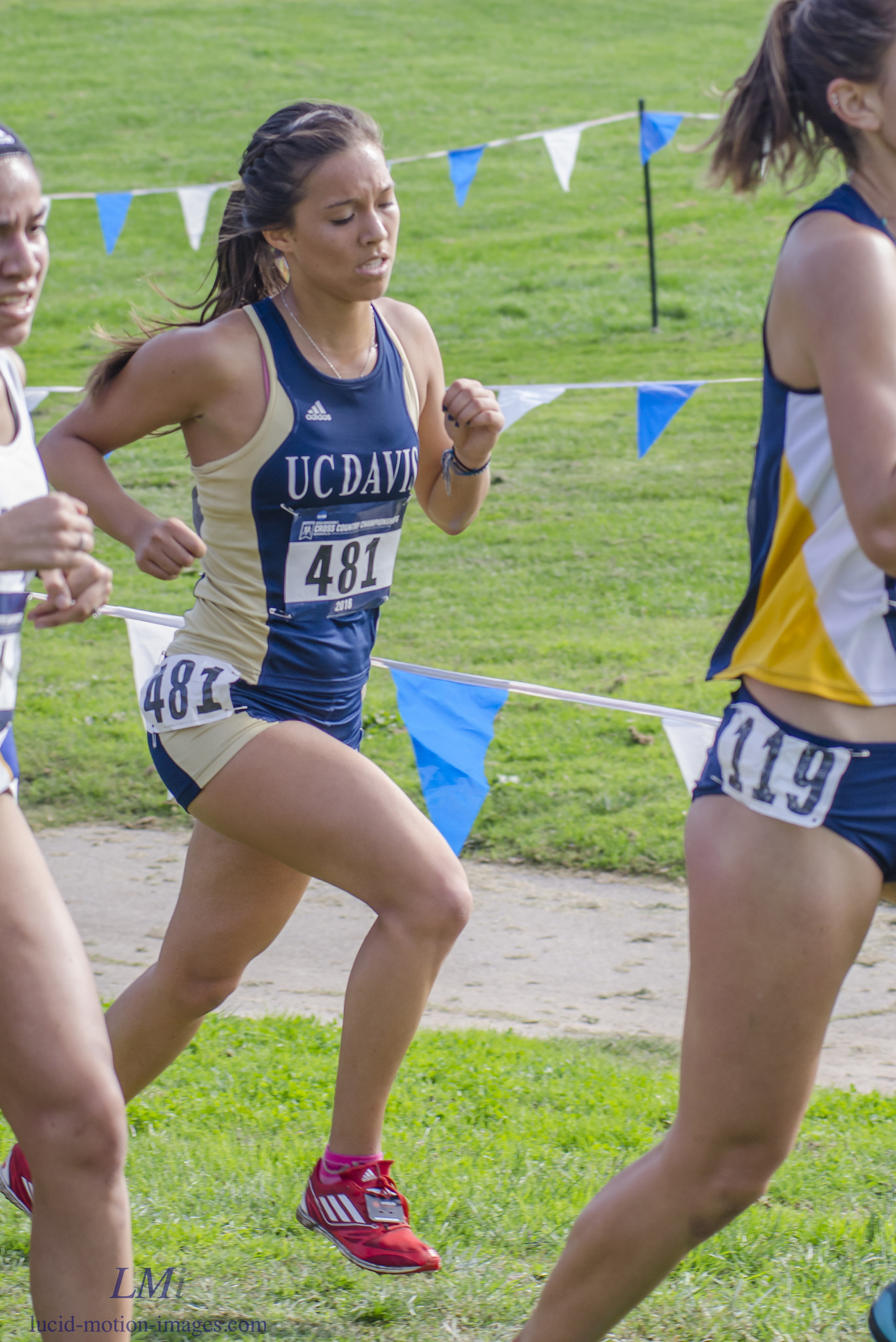 Nicole Lane Finishes Her Collegiate Cross Country Career